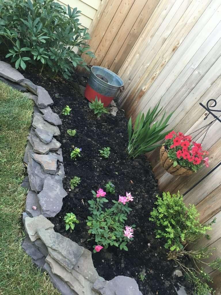 Small Garden Makeover