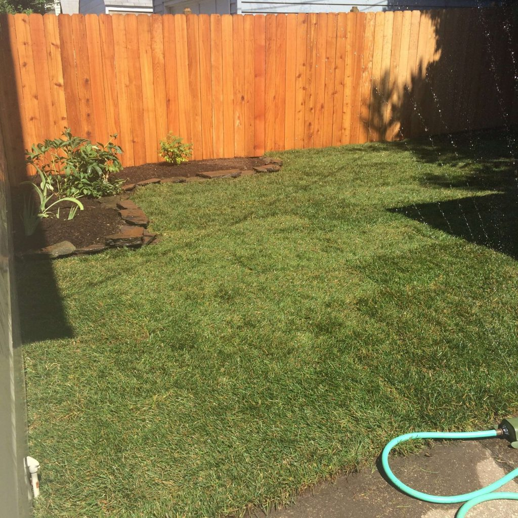 Small Yard and Garden Makeover
